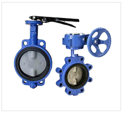 Stainless Steel Butterfly Valves Supplier